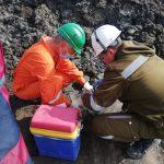 Отбор проб почвы нефтепродукты